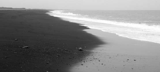 zlc beach