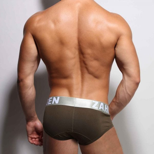 ZLC-ARMY-BRIEF-BACK