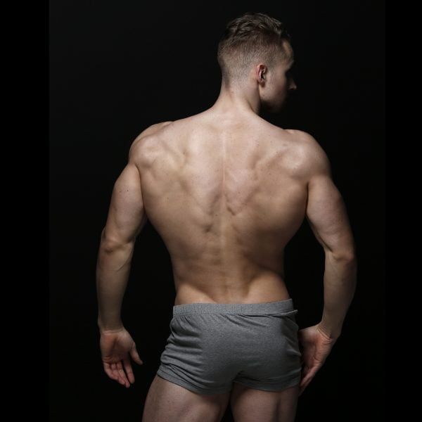 zlc-grey-boxer-back