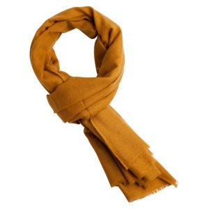 pashmina shawl mustard